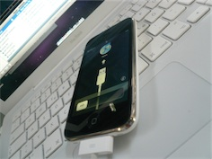 iphone3gs1b.jpg