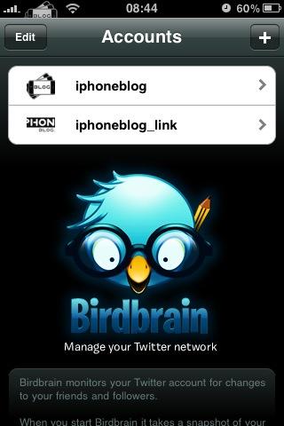 birdbrain1.jpg